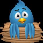 RokTwittie